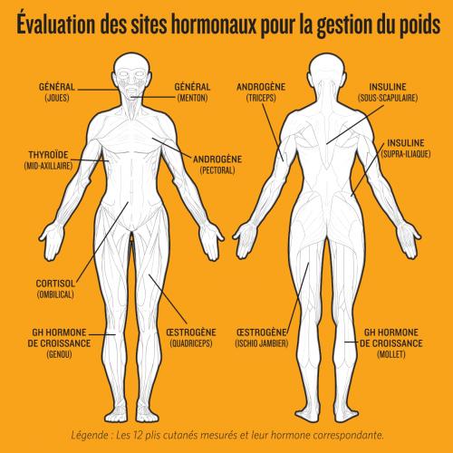 evaluation-site-hormonaux-sante-gestion-alimentaire-caroline-tremblay.png